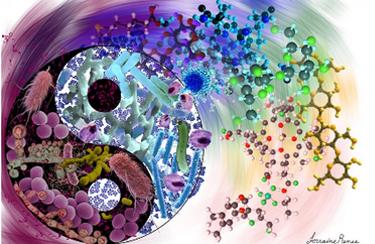 1- News | BIOM Probiotics | Sarasota | Microbiome's health | Probiotics
