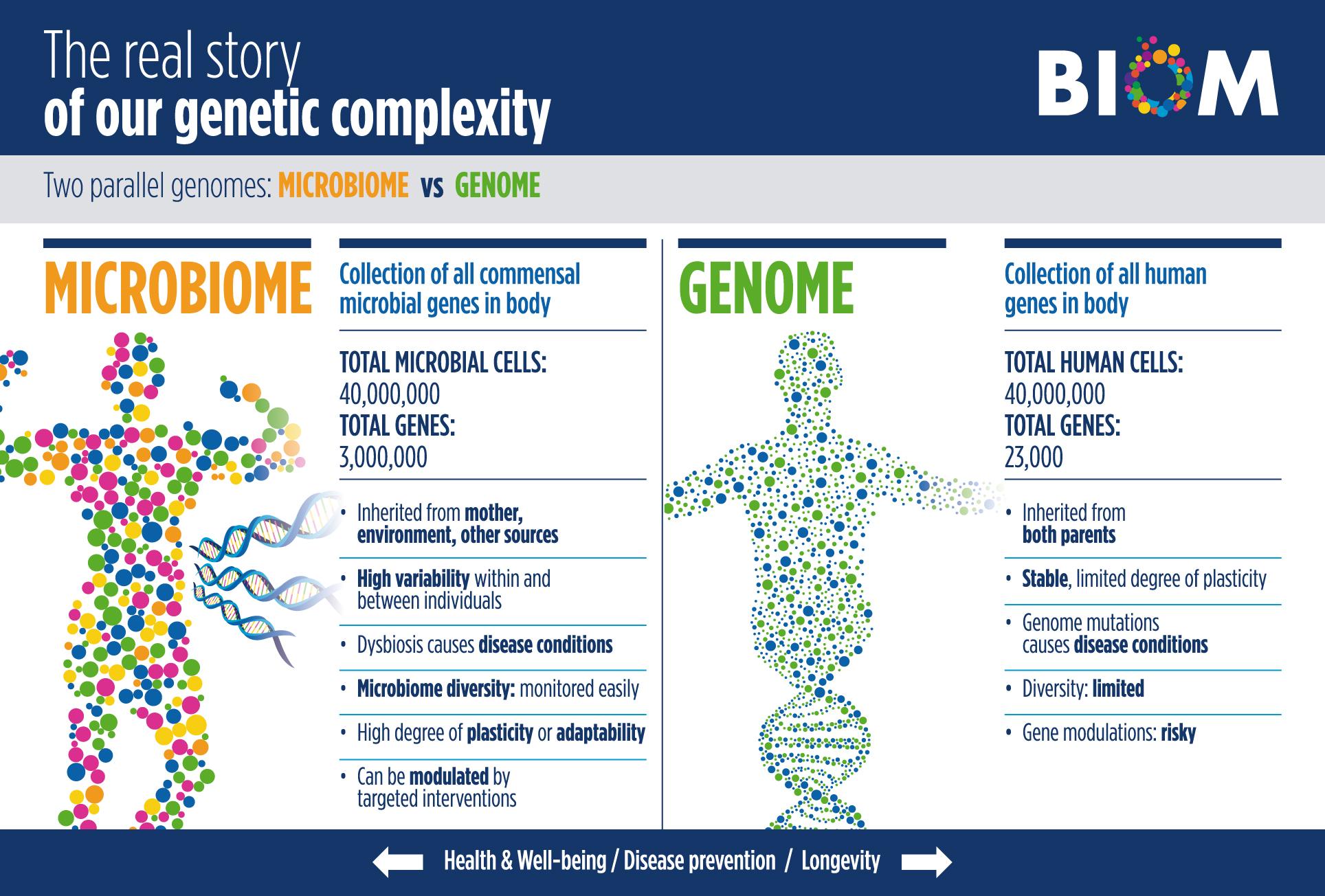 Biom Pharma | Biom Probiotics Sarasota | Human Microflora Probiotics