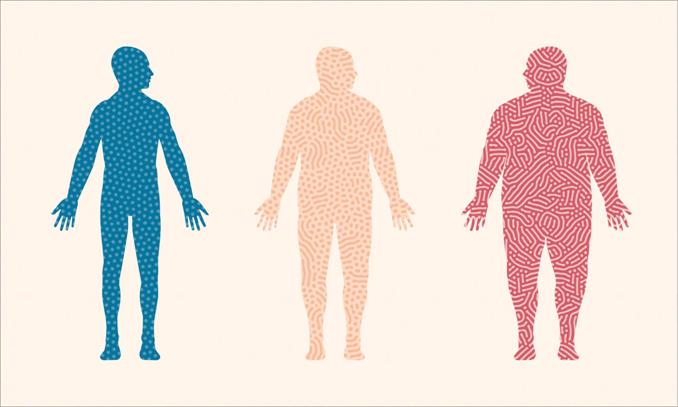 1- News | BIOM Probiotics | Sarasota | Microbiome's health | Gut Microbiome
