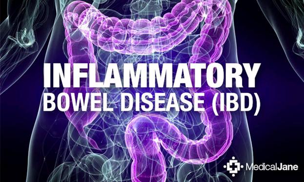 News | BIOM Probiotics | Sarasota | Microbiome's health | Inflammatory Bowel Disease