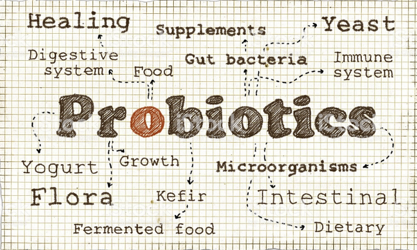 ARE YOU CONFUSED ABOUT PROBIOTICS? | Natural Probiotics